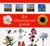 Blomessenser  En illustrerad guide